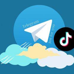 Download Video Tiktok No Watermark Telegram Begini Cara Terbaru